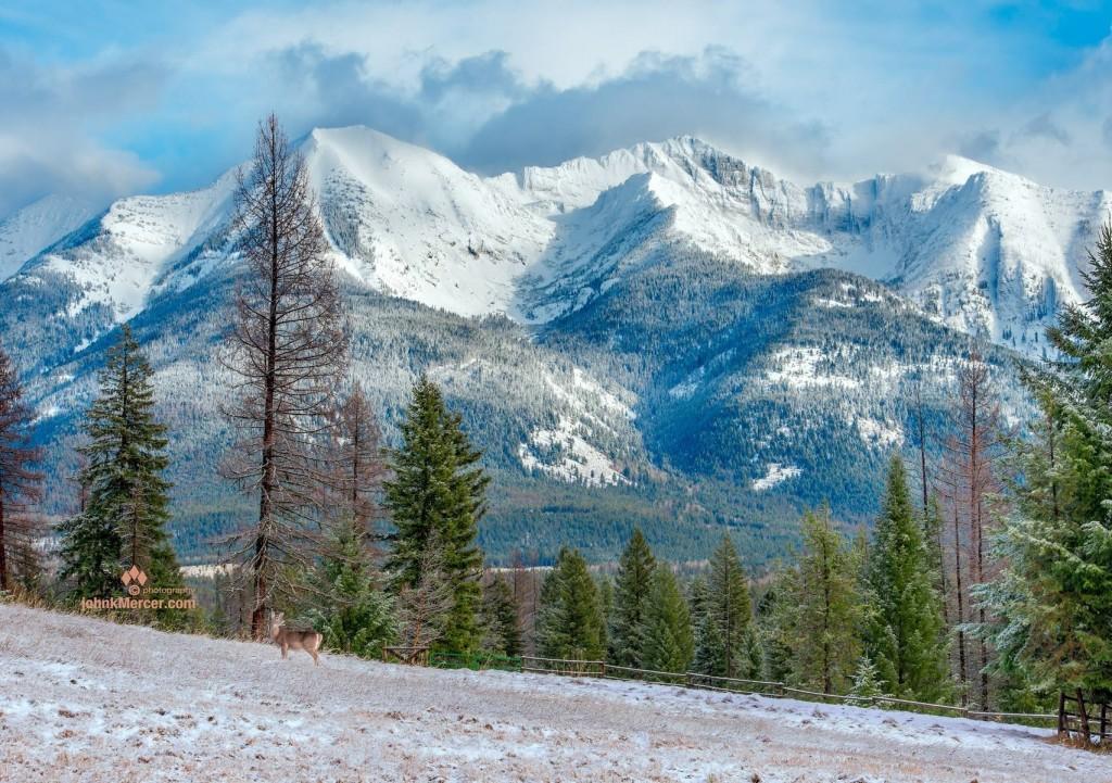 Axiom Montana